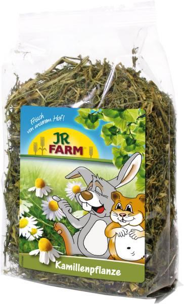 JR Kamillenpflanze 100g